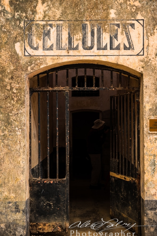 Cell Entrance