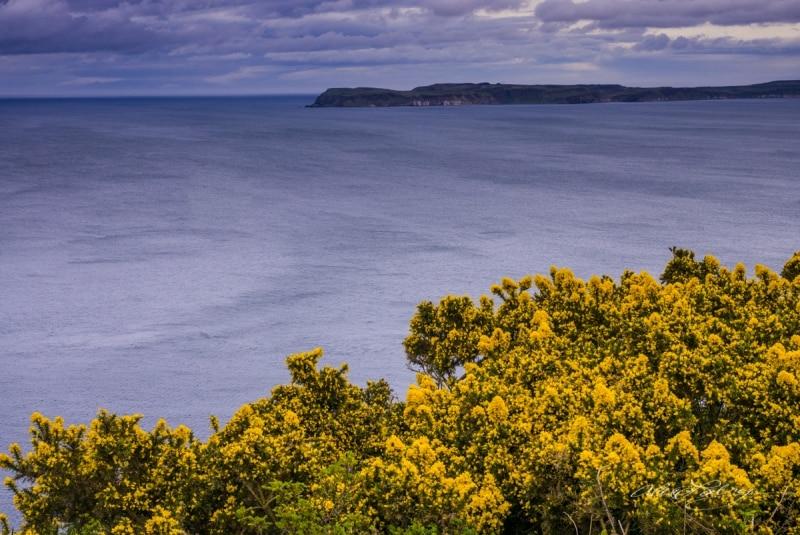 Irish Coast, near Belfast, Northern Ireland