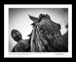 20120315_reims-frame copy