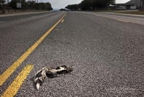 Highway 281 Texas, 2011