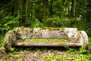 Forest Bench, near Blois, France, 2011