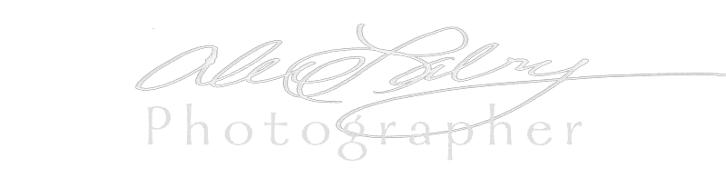 Alex Labry Photographer